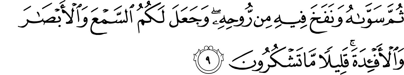 Surat As-Sajdah - The Noble Qur'an - القرآن الكريم